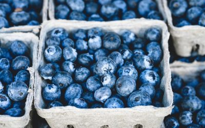Antioxidants and Athletic Performance